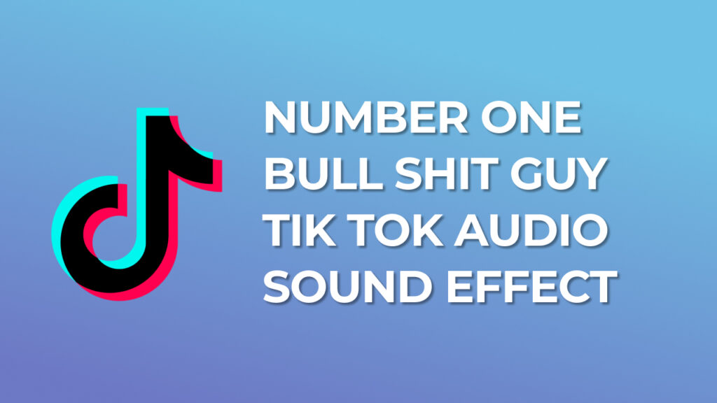 Number one bull shit guy Tik Tok Audio Sound Effect