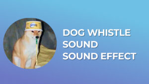 Dog Whistle Sound - Sound Effect download for free mp3