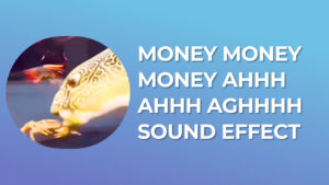 money money money AHHH AHHH AGHHHH Sound Effect download for free mp3