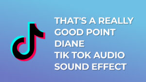That's A Really Good Point Diane Tik Tok Audio Sound Effect download for free mp3
