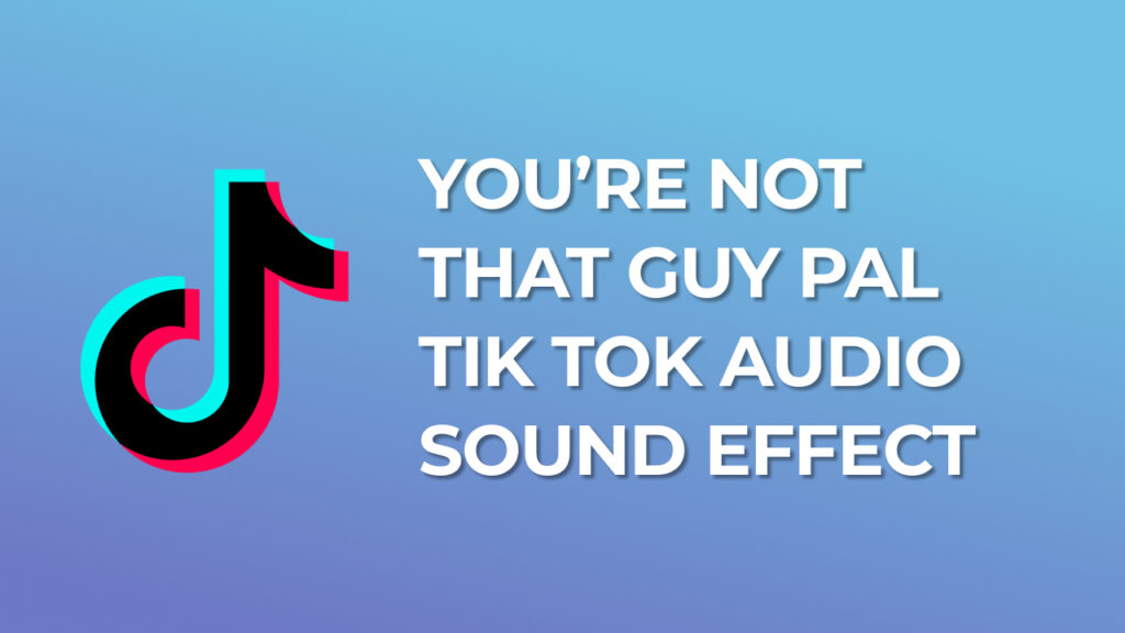 You're not that guy pal Tik Tok Audio Sound Effect download for free mp3