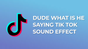 Dude what is he saying Tik Tok Sound Effect download mp3 for free