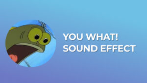 You What! Sound Effect download for free mp3