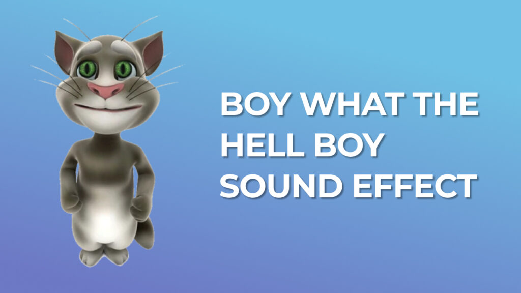 Boy what the hell boy Sound Effect tik tok trend download for free mp3