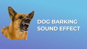 Dog Barking Sound Effect download for free mp3