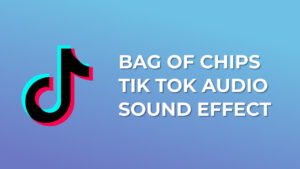 Bag of Chips Tik Tok Audio Sound Effect download for free mp3