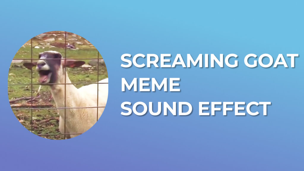 Screaming Goat Meme Sound Effect download for free mp3