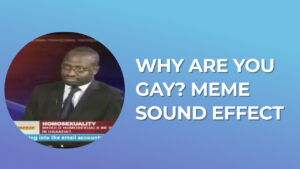 Why are you gay meme Sound Effect download for free mp3